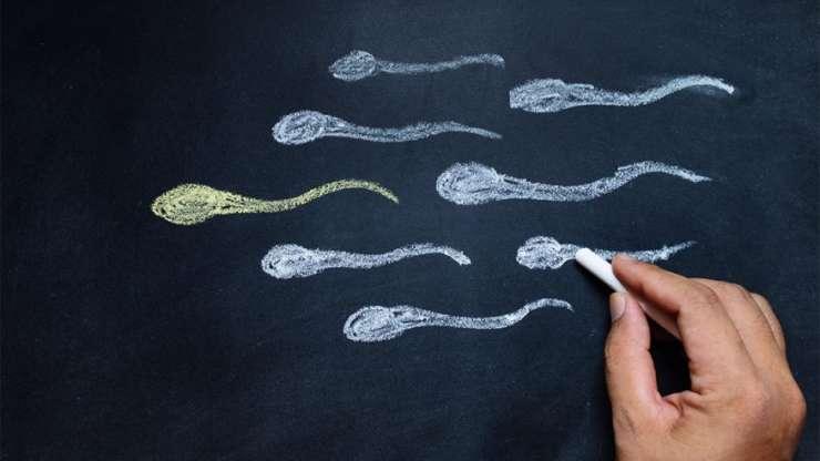 Sperm Testi (Spermiogram) Nedir, Nasıl Analiz Edilir?